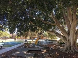 Kids Playground Turruwul Park