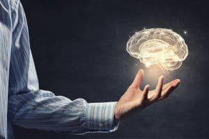 Decade of the Brain